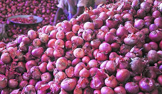 After The Sale Start Exporting Onions From The Country