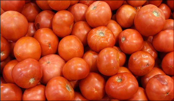 Use Of Tomatoes Increase The Age Of Lungs Research