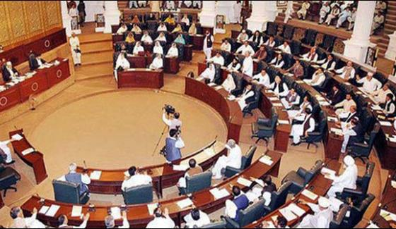 Senate Election 34 Candidates Submitted Papers From Khyber Pakhtunkhwa