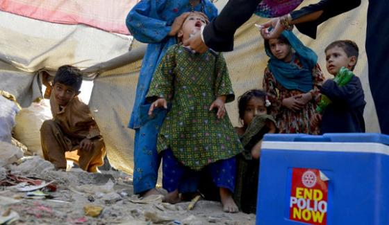 This Year Will Be Last For Polio Campaign Federal Health Minister