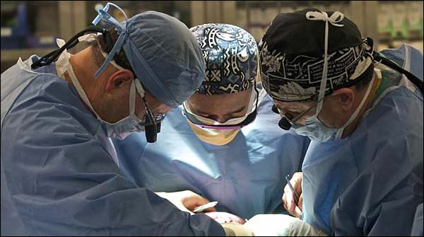New Dutch Law Makes Every Adult An Organ Donor