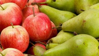 Apple And Pear Many Fruits Help Save The Fluid