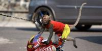 بندر میاں کا بائیک رائیڈنگ کا شوق ادھورا رہ گیا