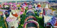 کروڑوں پھول دنیا کے کس باغ میں ہیں؟