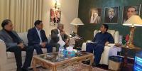 اوورسیز پاکستانی ملک کا امیج بہتر بنانے کی کوشش کریں، بلاول بھٹو