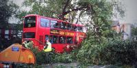تھائی لینڈ میں مسافر بس درخت سے جا ٹکرائی،17افراد ہلاک