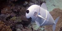 سمندر میں نگرانی کیلئے روبوٹ مچھلی تیار