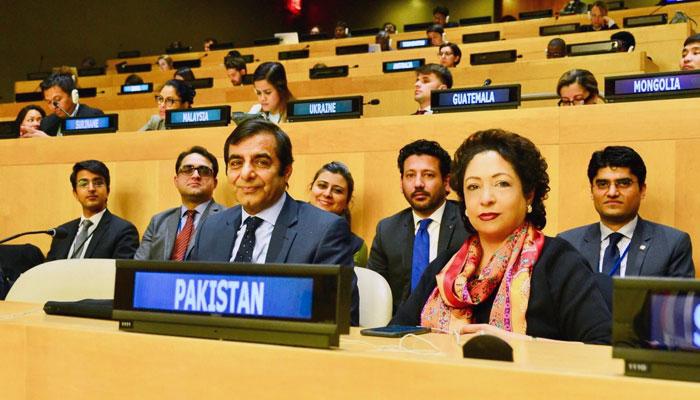 پاکستان اقوام متحدہ کی غیرسرکاری تنظیموں کی کمیٹی کا رکن منتخب