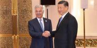 وزیر خارجہ خواجہ آصف کی چینی صدر سے ملاقات
