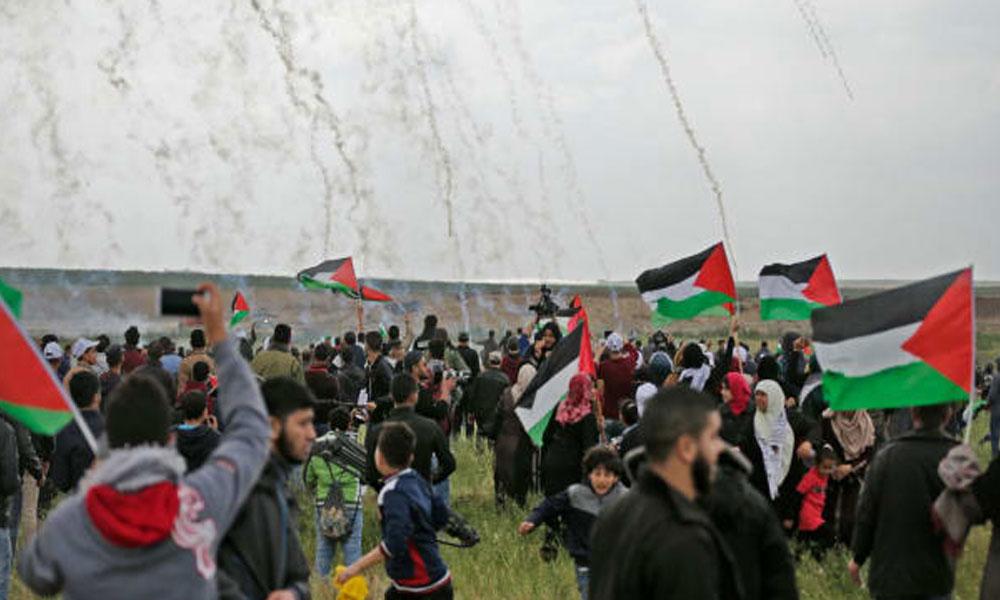 زیک گولڈ اسمتھ کی فلسطینیوں کے زخم پر نمک پاشی