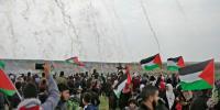 جمائمہ کے بھائی کی فلسطینیوں کے زخم پر نمک پاشی