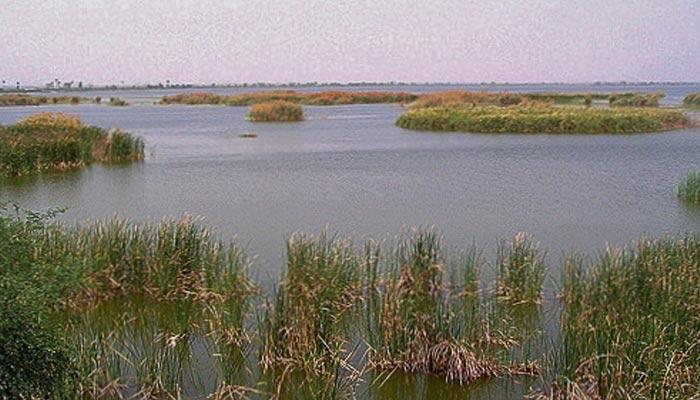 جنگلی حیات کی پناہ گاہ   ''لنگھ جھیل''