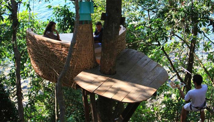 درخت پر لٹکتے گھونسلے میں بیٹھ کر مزے دار کھانوں کا لطف اْٹھائیں