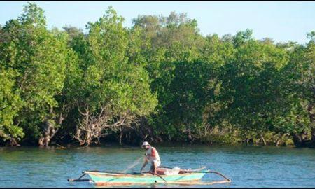 تیمر کے ساحلی جنگلات میں آباد تیمر کمیونٹی