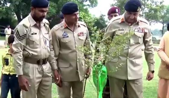 ملک بھر میں آج 20 لاکھ پودے لگائے گئے