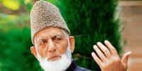 ''مستحکم پاکستان مسئلہ کشمیر کے حل کیلئے ناگزیر ہے''