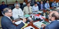 نئی حکومت بجلی تقسیم کار کمپنیوں کی نجکاری کرے، علی ظفر