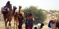 تھرپارکر میں خشک سالی اور قحط ، متاثرہ علاقوں سے نقل مکانی