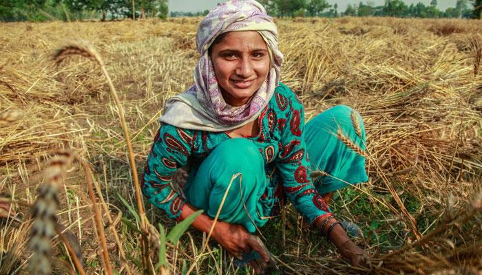 ایشیائی ترقیاتی بینک پاکستان کو10 کروڑڈالر قرضہ دے گا