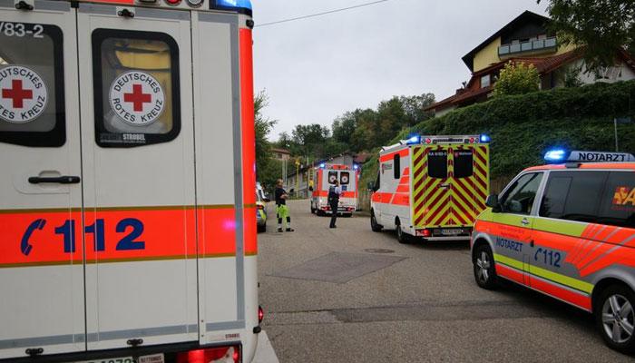 جرمنی : وائن فیسٹیول کے شرکاء پرتتیامکھیوں کا حملہ ،درجنوں زخمی