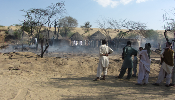 تھرمیں ہرن ،مور اور بچوں کی اموات میں شدت