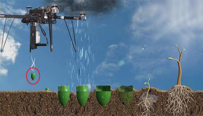 ایک دن میں 1 لاکھ درخت لگانے والا ڈرون تیار