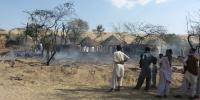 تھر میں ہرنوں ،موروں اور بچوں کی ہلاکتوں میں اضافہ