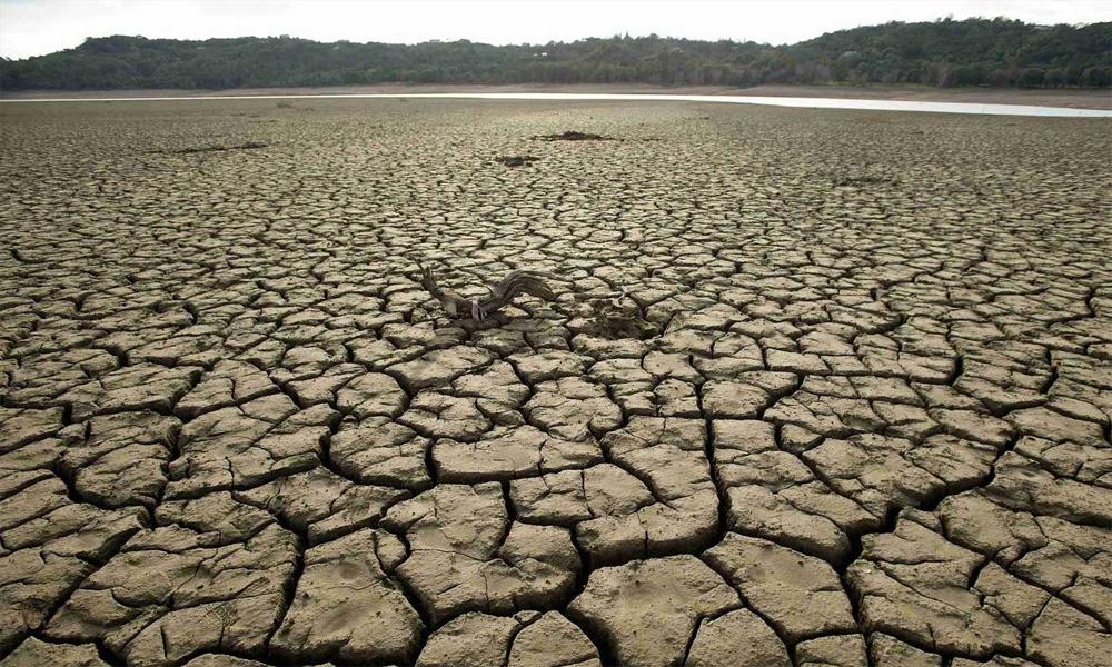 سندھ میں موسمیاتی تبدیلیاں، بارشیں نہ ہونے سے غذائی قلت