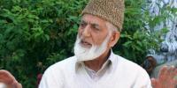 'محرم کے جلوسوں پر بھارتی فورسز کے حملے قابل مذمت ہیں'