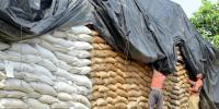 قحط متاثرین میں گندم کی تقسیم کے دوران پیسے لینے کا انکشاف