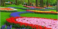 کینبرا میں سجا پھولوں کا سالانہ میلہ