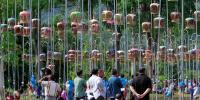 تھائی لینڈ میں پرندو ں کی گلو کاری کا سالانہ مقابلہ