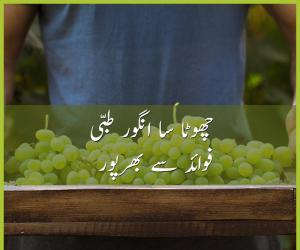 چھوٹا سا انگور طبی فوائد سے بھرپور
