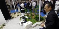Robots Lend A Hand At Tokyo Expo