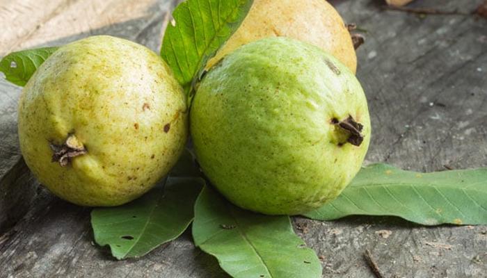 ذیابیطس کے مریض امرود کھائیں