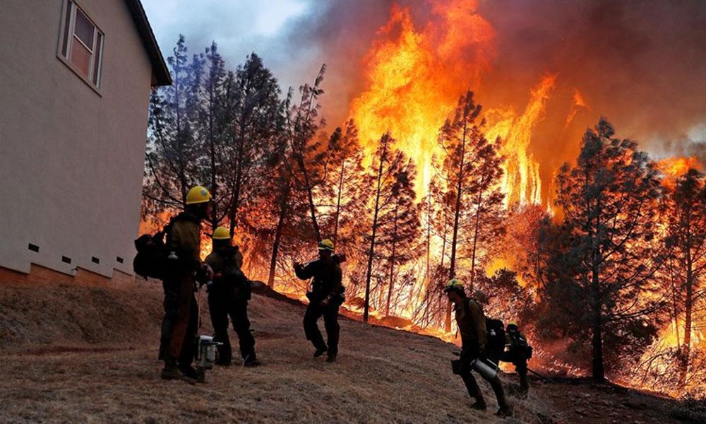 کیلیفورنیا: جنگلات میں لگی آگ نے 9 افراد کی جان لے لی