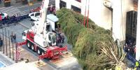 Rockefeller Center Christmas Tree Arrived