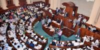 Senate Election In Punjab Assembly