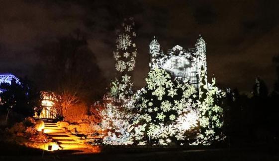 Christmas Garden Berlin Light Show Kicks Off