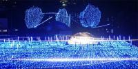 Midtown Christmas Starlight Garden Japan