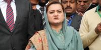Marriyum Aurangzeb Condems Fawads Statement