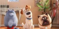 The Secret Life Of Pets 2 Trailer
