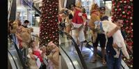 Cute Footage Show Dozens Of Dogs Carried Down Escalator At Shopping Mall Brazil