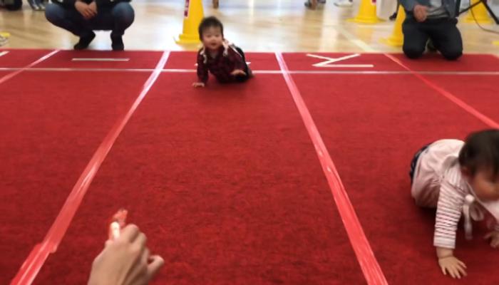 جاپان میں ننھےبچوں کا گھٹنوں کے بَل دوڑنے کا منفرد مقابلہ