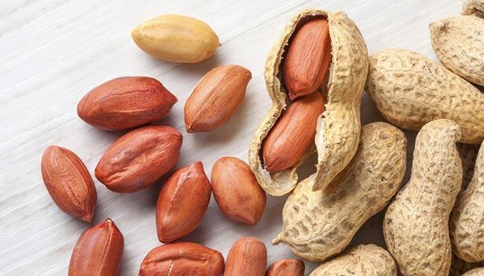 مونگ پھلی کھائیں، صحت مند زندگی پائیں