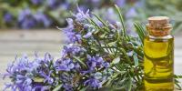 Here Are Some Lesser Known Benefits Of Rosemary Oil