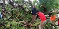 Cyclone Pethai Makes Landfall In Andhra Pradesh One Person Killed