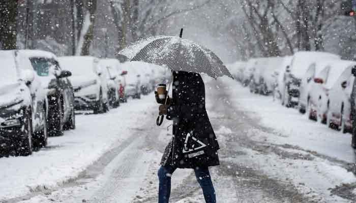 امریکی ریاست جنوبی ڈکوٹا میں برفباری کا طوفان