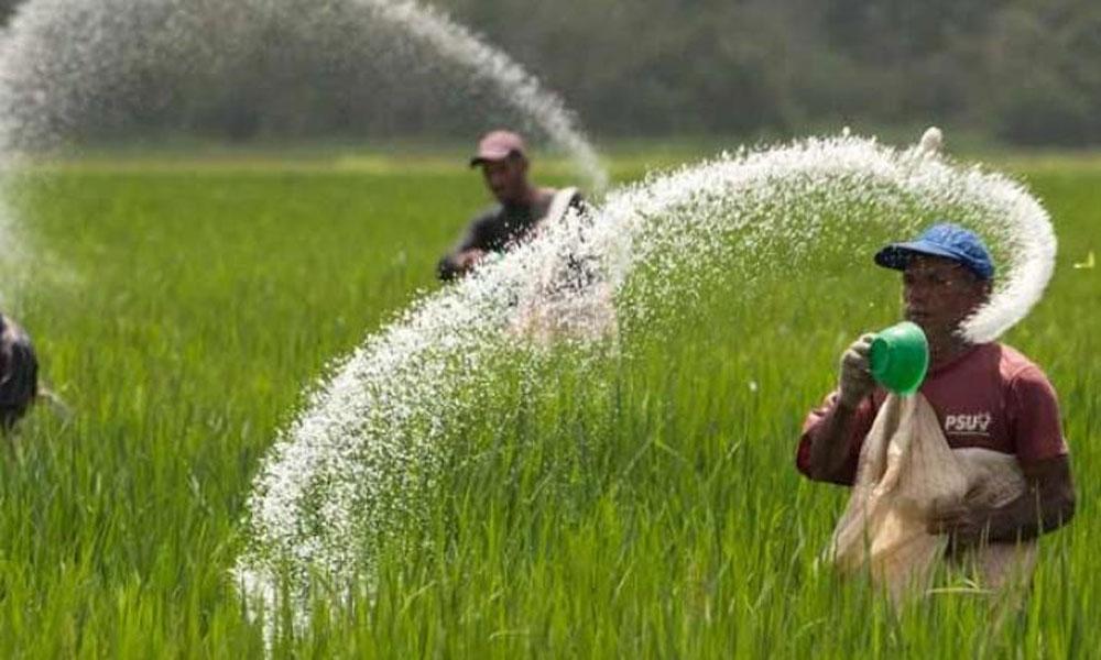 پنجاب میں فصلوں کی انشورنس اسکیم کا آغاز