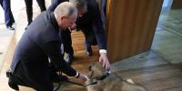 Vladimir Putin Gifted Puppy By Serbian President